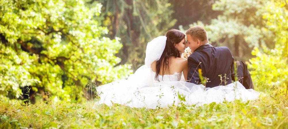 wedding websites banner