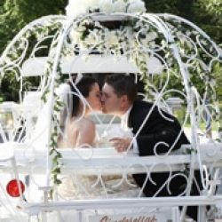 Dream Horse Cinderella Carriage Rides and Rental
