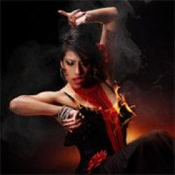Bellydancers & More by Dancesoul Company