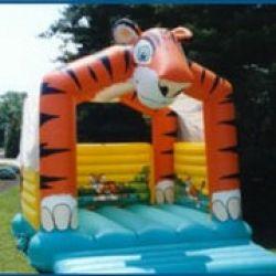 Funtastix - Delaware Inflatable Bounces