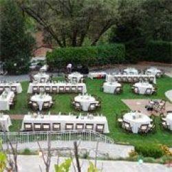 Meadow Vista Gardens