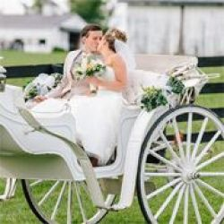 Grand Carriages & Baraat Horse Services