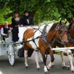 Country Wagon Carriage Service