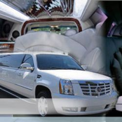 Sea The Keys Group Transport & Party Bus Shuttle