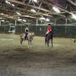 Hunter Brook Horse Farm