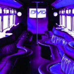 VIP Club Bus