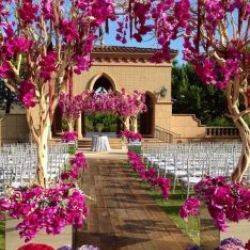 Pro Event and Wedding Planning by Stephanie