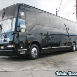 White Rose Limousine Inc.