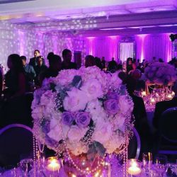 Noa G Designs- Special Events and Catering Desig