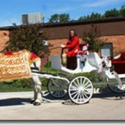 Yesteryear Horse and Carriage, Inc.