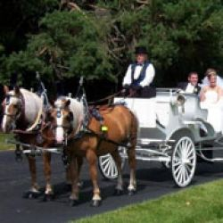 Colonial Acres Carriage Service