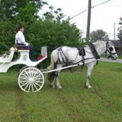 Heritage Carriage Company