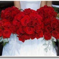 Signature Occasions - MS Wedding Consultant