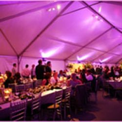 Bob Mutton Party & Tent Rentals