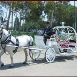 Memory Makers Carriage Company
