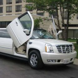 Specialty Limousine